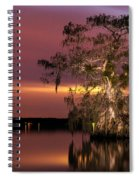 Cypress At Twilight Spiral Notebook