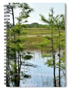 Cypress Dome Spiral Notebook