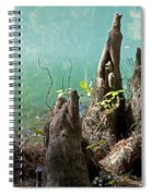 Cypress Knees In The Mist Spiral Notebook