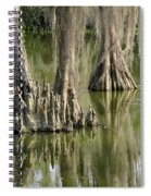 Cypress Knees Spiral Notebook