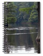 Cypress Lake Spiral Notebook