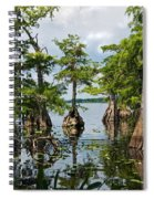 Cypress Reflections Spiral Notebook