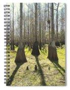 Cypress Sentinals Spiral Notebook