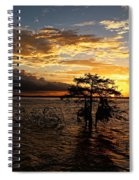 Cypress Sunset Spiral Notebook