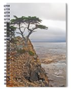 Cypress Tree At Pebble Beach Spiral Notebook