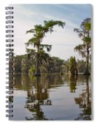 Cypress Trees And Spanish Moss In Lake Martin Spiral Notebook