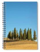 Cypress Trees Spiral Notebook
