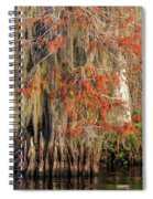 Cypress Winter Colors Spiral Notebook