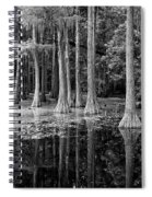 Cypresses In Tallahassee Black And White Spiral Notebook