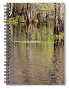 Cypresses Reflection Spiral Notebook