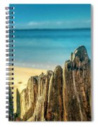 Cyprus Of The Sea Spiral Notebook
