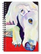 Cyrus Spiral Notebook