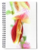 Cytisus Scoparius Firefly Ginster Spiral Notebook
