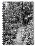 D3st1ny Spiral Notebook