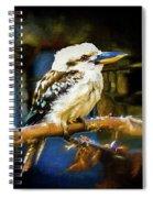 Kookaburra Dacelo Novaeguineae Spiral Notebook