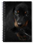 Dachshund - Puppy Love Spiral Notebook