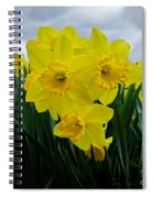 Daffodil Delight Spiral Notebook