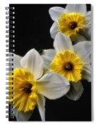 Daffodil Dream Spiral Notebook