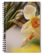 Daffodil Flowers Spiral Notebook