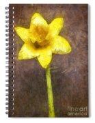 Daffodil Pencil Spiral Notebook