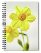 Daffodil Strong Spiral Notebook