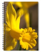 Daffodil Yellow Spiral Notebook