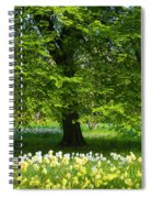 Daffodils And Narcissus Under Tree Spiral Notebook