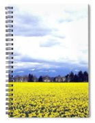 Daffodils By The Million Spiral Notebook
