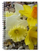 Daffodils Flower Artwork 29 Daffodil Flowers Agate Rock Garden Floral Art Prints Spiral Notebook