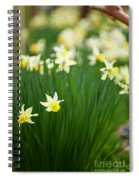 Daffodils In A Bunch Spiral Notebook