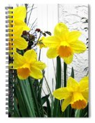 Daffodils Spiral Notebook
