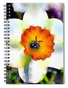 Daffy Down Dilly Spiral Notebook