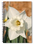 Dafodil168 Spiral Notebook
