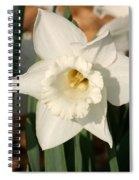 Dafodil211 Spiral Notebook