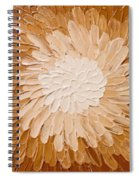 Dahlia 1 Spiral Notebook