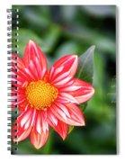 Dahlia And Proverbs Verse Spiral Notebook