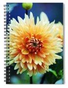 Dahlia Beauty Spiral Notebook