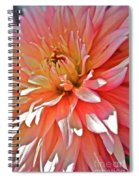 Dahlia Blush Spiral Notebook