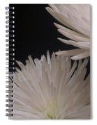 Dahlia Couple Spiral Notebook