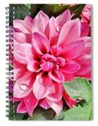Dahlia Dripping Spiral Notebook
