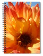 Dahlia Floral Orange Yellow Flower Botanical Art Prints Canvas Baslee Troutman Spiral Notebook