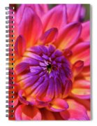 Dahlia Flower 017 Spiral Notebook