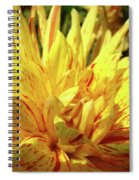 Dahlia Flower Art Collection Giclee Prints Baslee Troutman Spiral Notebook