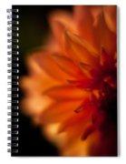 Dahlia Fueur Spiral Notebook