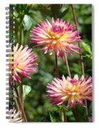 Dahlia Garden Floral Pink Yellow Botanical Landscape Baslee Troutman Spiral Notebook
