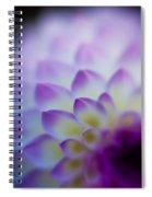 Dahlia Glow Spiral Notebook
