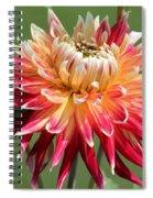 Dahlia Named Akita Spiral Notebook