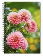 Dahlia Passion Fruit Spiral Notebook
