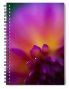 Dahlia Rainbow Spiral Notebook