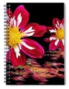 Dahlia Reflections Spiral Notebook